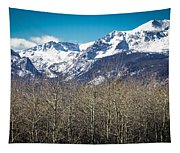 Rocky Mountain Woodland Tapestry