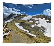 Rocky Mountains Path Tapestry