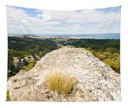 Rocky Outcrops Of Trotters Gorge Otago Nz Tapestry