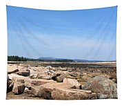 Rocky Shore To Rocky Mountain Tapestry
