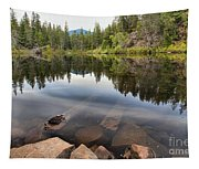 Rocky Shores At Swim Lake Tapestry
