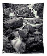 Rocky Stream Tapestry