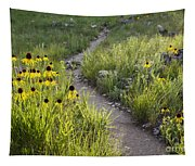 Rocky Top Trail Tapestry