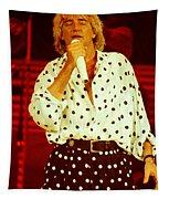 Rod Stewart E16 - 1991 Tapestry
