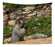 Rodent In The Rockies Tapestry