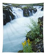 Rogue River Falls 5 Tapestry