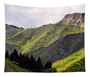 Rolling Hills Tapestry