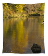 Root River Autumn 2 Tapestry