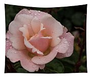 Rose And Rain - Pale Pink Raindrops Tapestry