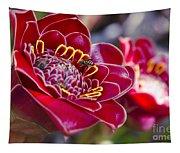 Rose De Porcelaine Tapestry