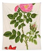 Rose Eglanteria Tapestry
