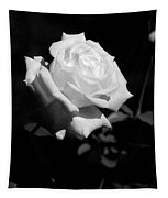 Rose - Infrared Tapestry