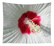 Rose Mallow - Honeymoon White With Eye 01 Tapestry