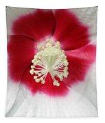 Rose Mallow - Honeymoon White With Eye 03 Tapestry