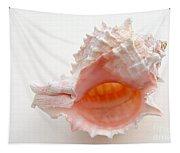 Rose Murex Seashell Tapestry