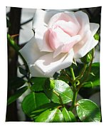 Rose Named Pearl Tapestry