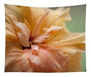 Rose Of Sharon. Hibiscus Tapestry