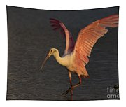 Roseate Spoonbill Photograph Tapestry