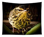 Round Warbler Tapestry