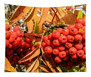 Rowan Berry Tapestry