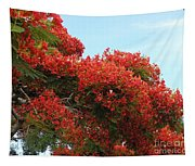 Royal Poinciana Branch Tapestry
