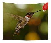 Ruby-throat Hummingbird Tapestry