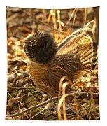 Ruffed Grouse Display Tapestry