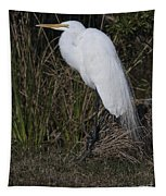 Ruffled Feathers Tapestry
