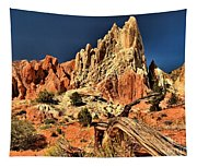 Rugged Rainbow Tapestry