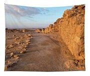 Ruins Of A Fort, Masada, Israel Tapestry