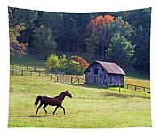 Running Horse And Old Barn Tapestry