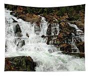Running Water Glen Alpine Falls Tapestry