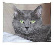 Russian Blue Tapestry