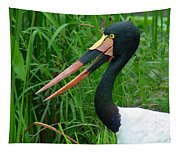Saddle Billed Stork-00139 Tapestry