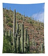 Saguaro Forest In The Superstitions Tapestry