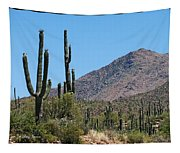 Saguaros And Mountain Tapestry