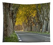 Saint Remy Trees Tapestry