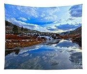 Salt River Reflections Tapestry