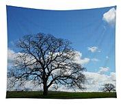 Same Tree Many Skies 11 Tapestry