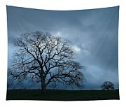 Same Tree Many Skies 14 Tapestry
