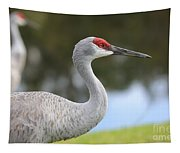 Sandhill And Friend Tapestry