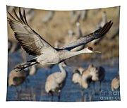 Sandhill Crane Lift Off Tapestry