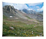 Sangre De Cristos Meadow And Mountains Tapestry