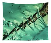 Satellite View Of Cays In North Tapestry