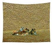 Savannah Queens Tapestry
