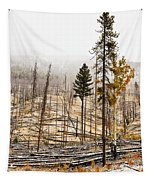 Sawback Burn, On Bow Valley Parkway Tapestry