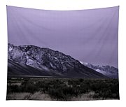 Sawtooth Mountain In December Tapestry
