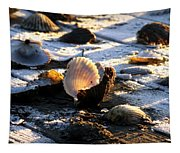 Half Shell On Ice Tapestry