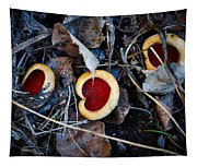 Scarlet Elfcup Tapestry