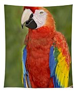 Scarlet Macaw Parrot Tapestry